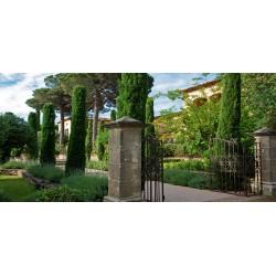 Villa Marie in Ramatuelle, St Tropez