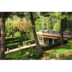 Jardin Serre de la Madonne in Menton