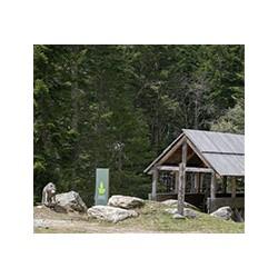 Alpha Wolf Park - Loup Parc Animalier du Mercantour in Saint-Martin Vesubie in the Boréon