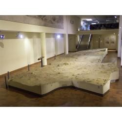MUSÉE D'ARCHÉOLOGIE DE NICE - SITE DE TERRA-AMATA