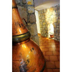 Factory and Museum Perfumery Galimard in Eze village