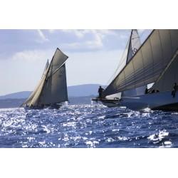 Les Voiles de  St Tropez - Sailing Race